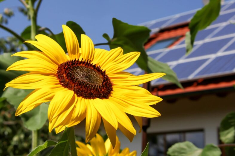 a better way to go solar, Florida Solar Report,